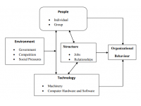 Elements of organizational behavior