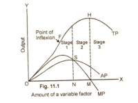 Law of Production Function
