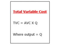 Total Variable Cost