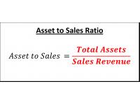 Asset to Sales Ratio