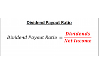 Dividend Payout Ratio